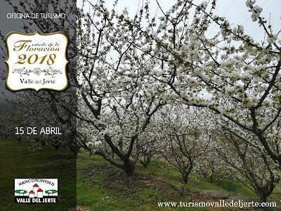 Fechas Cerezo en Flor Valle del Jerte