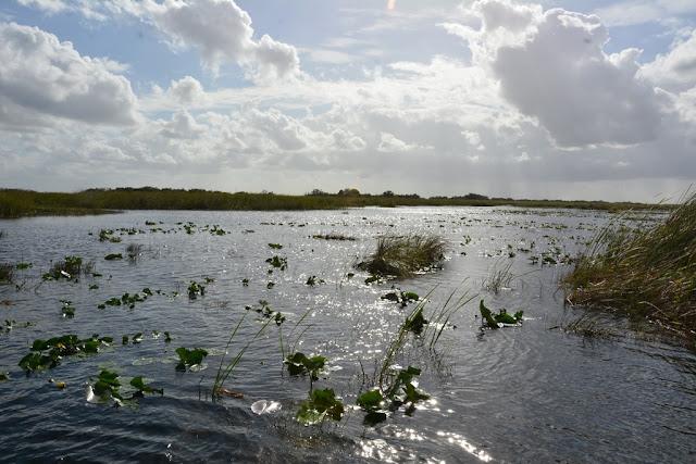 Everglades Rivers sun clouds