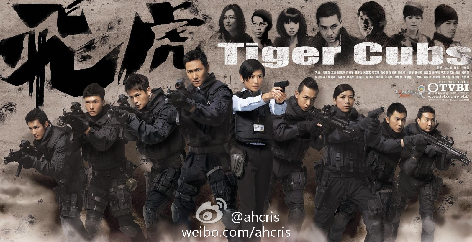 My Favorite TVB: Tiger Cubs Poster