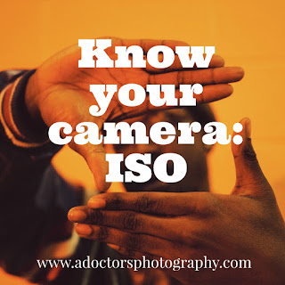 Know your camera: ISO