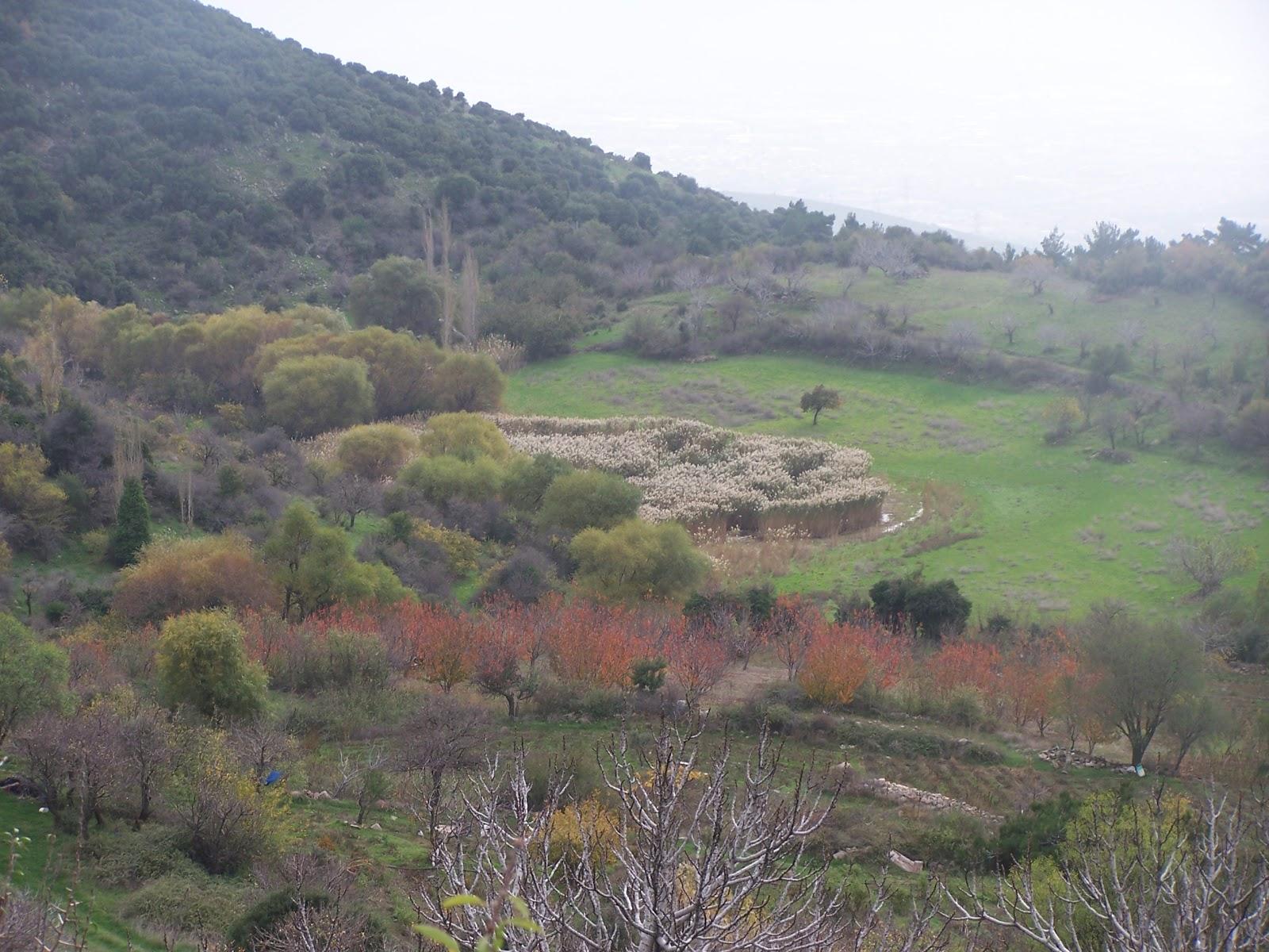 Bin yılın sisindeki Batı Ermenistan 51
