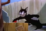 Springtime for Thomas tom and jerry downlode