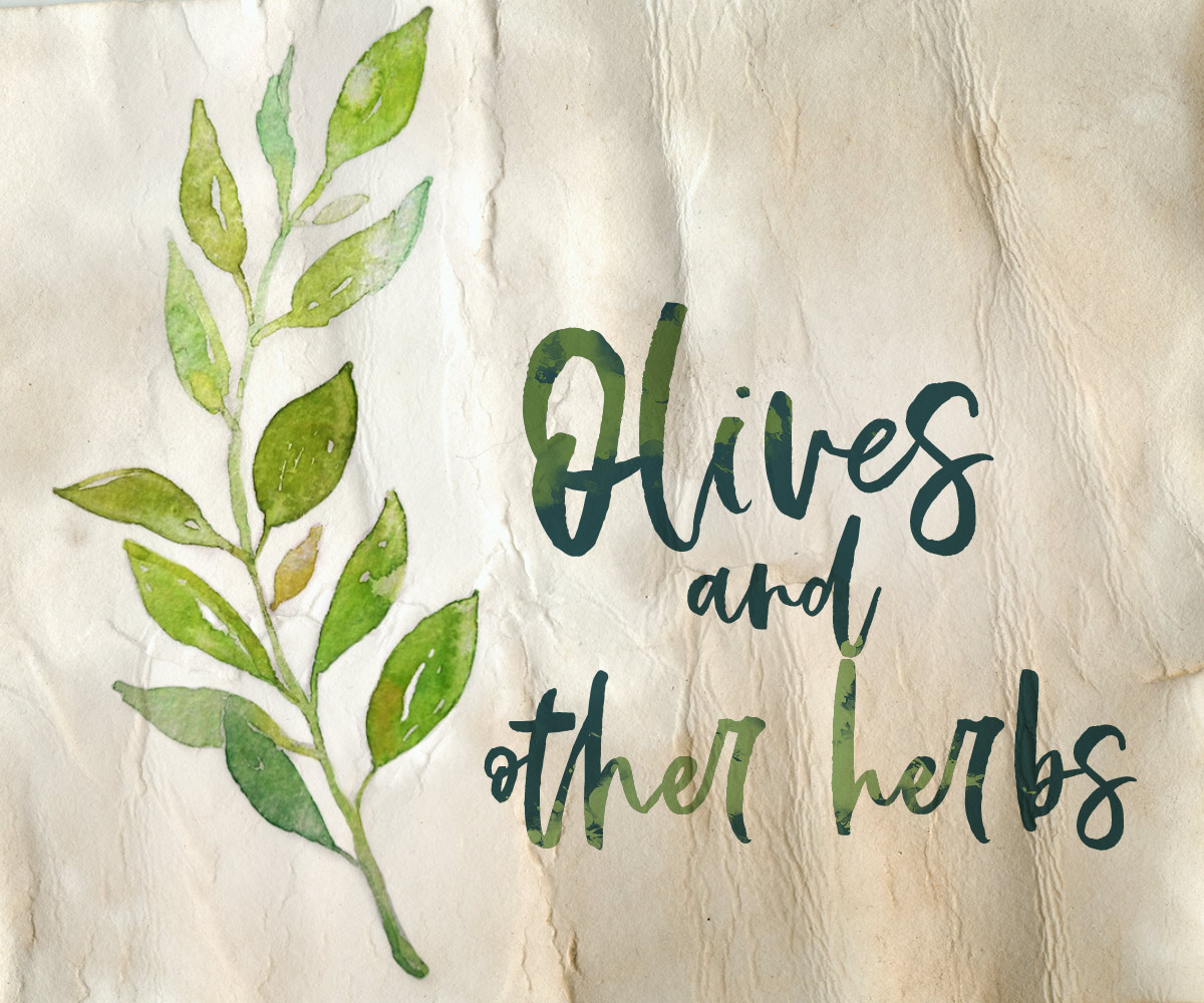 Olives Watercolor