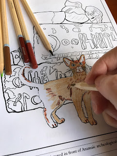 Abyssinian cat picture from Cat Breeds Coloring Book One