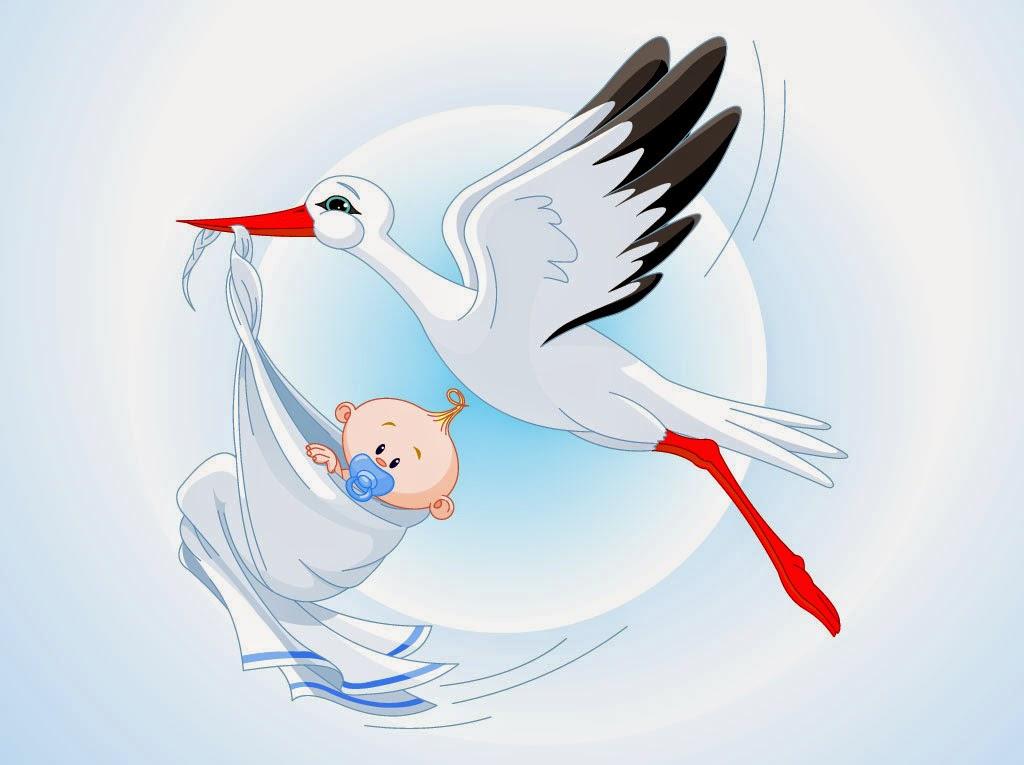 Прикольная картинка аиста с ребенком в клюве, днем рождения