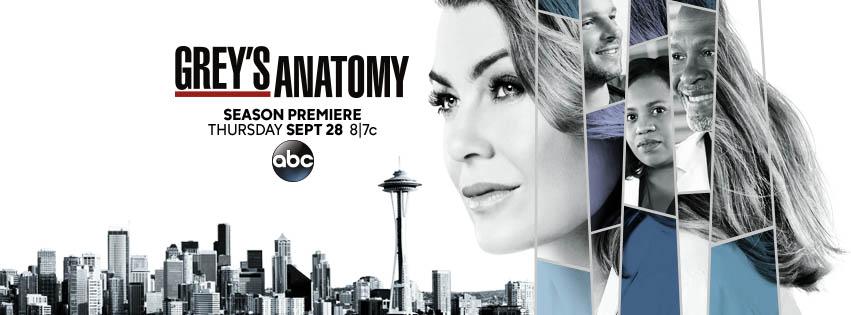 Grey's Anatomy Sezonul 14 episodul 16