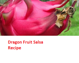Dragon Fruit Salsa Recipe