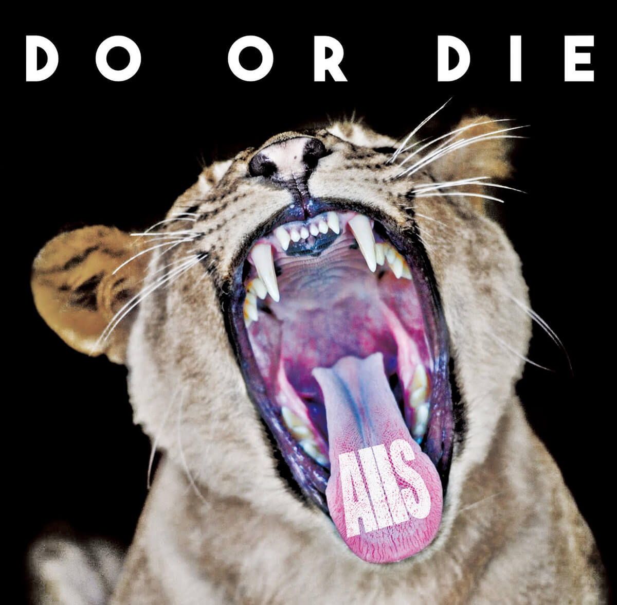 AllS Do or Die EP