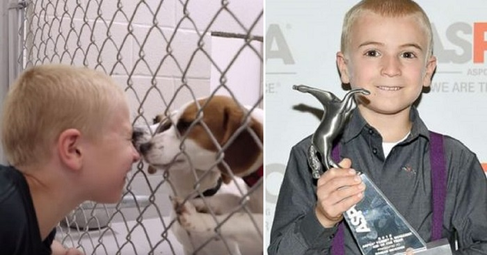7-Year-Old 'Kid Of The Year' Saved Over 1,300 Dogs And 40 Cats