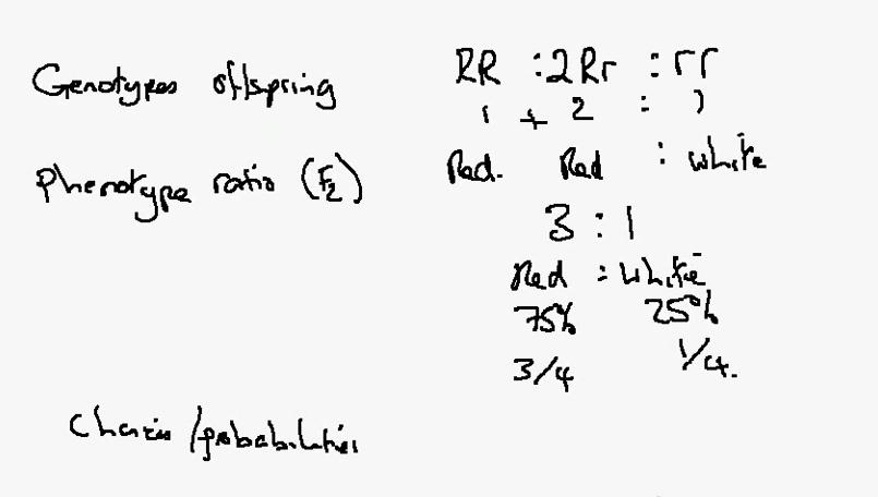 Luke Biology: 3.21b Genetic Probabilities
