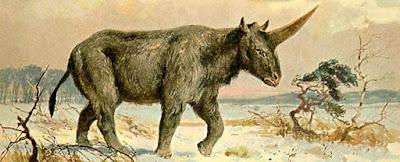 """Um crânio fossilizado revelou quando o último 'unicórnio siberiano"""" viveu na Terra"""
