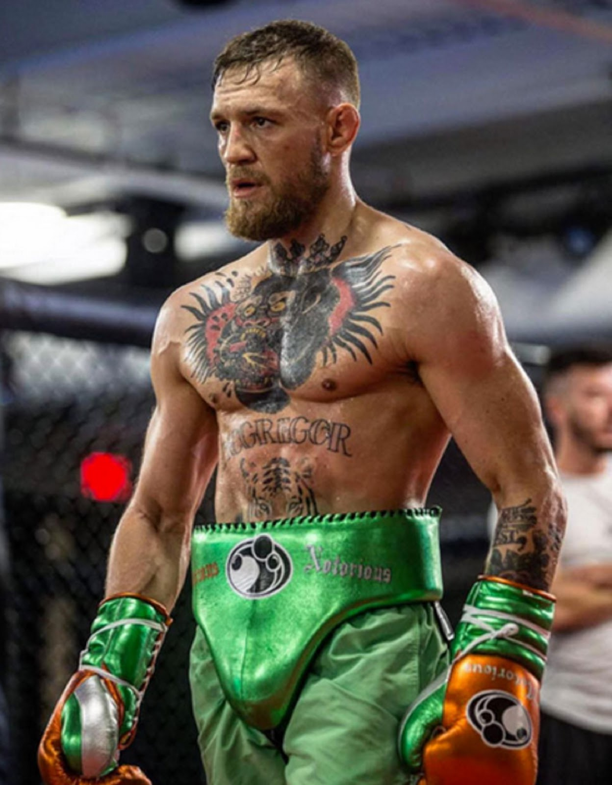 CONOR MCGREGOR 3