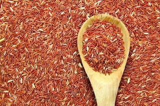 beras merah obat tradisional kolesterol