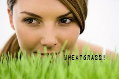 Forever Healthy and Young: Wheatgrass Juice & Its