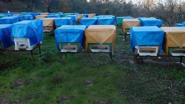Ήρθε το κυψελόπανο για προστασία κυψελών και μελισσιών