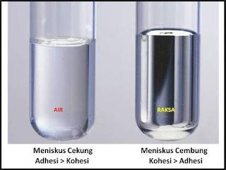 Perbedaan Kohesi dan Adhesi