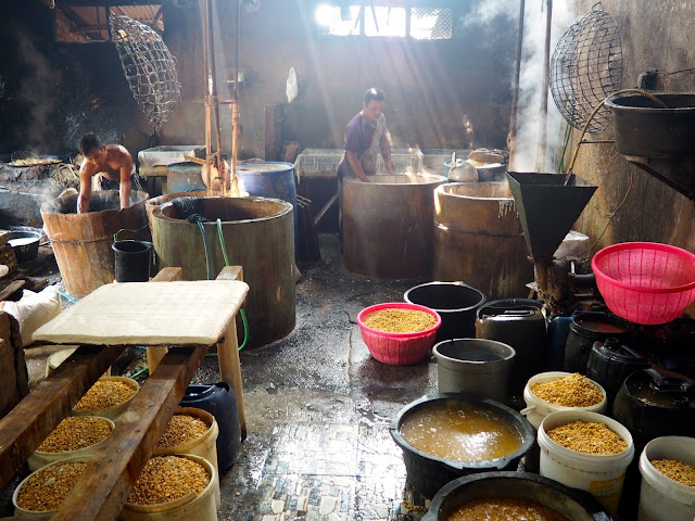 Tofu home industry, Yogyakarta, Java, Indonesia