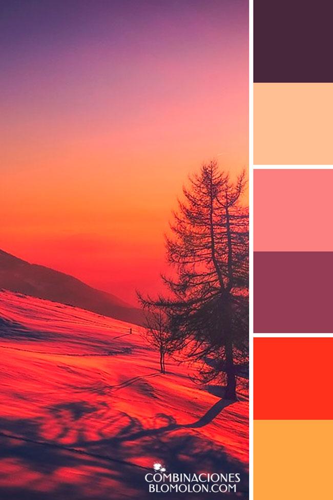 combinacion_de_colores_variedad_de_temporada_6