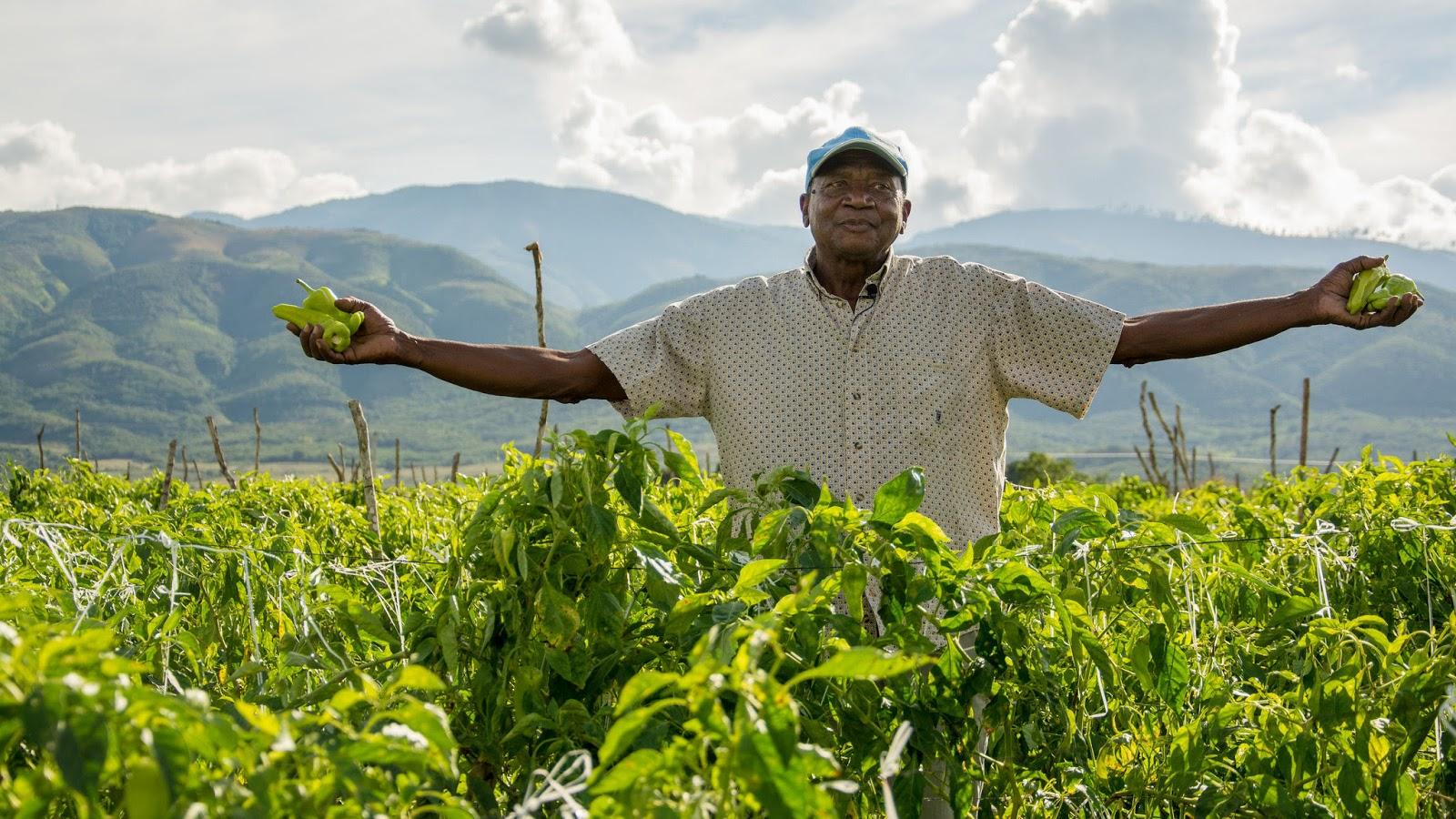 Presidente Danilo Medina valora laboriosidad agricultores dominicanos, artífices de soberanía alimentaria