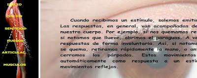 http://www.ceiploreto.es/sugerencias/juntadeandalucia/la_tierra/relacion/indexrelacion.html