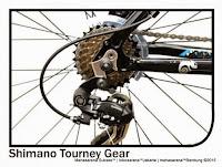 Sepeda Gunung Reebok Chameleon Rangka Aloi 6061 21 Speed 26 Inci