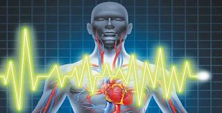 «Νέα καρδιά» με μεταμόσχευση βλαστοκυττάρων