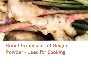 Benefits and uses of Ginger Powder - Used for Cooking