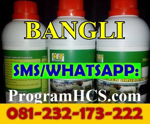 Jual SOC HCS Bangli