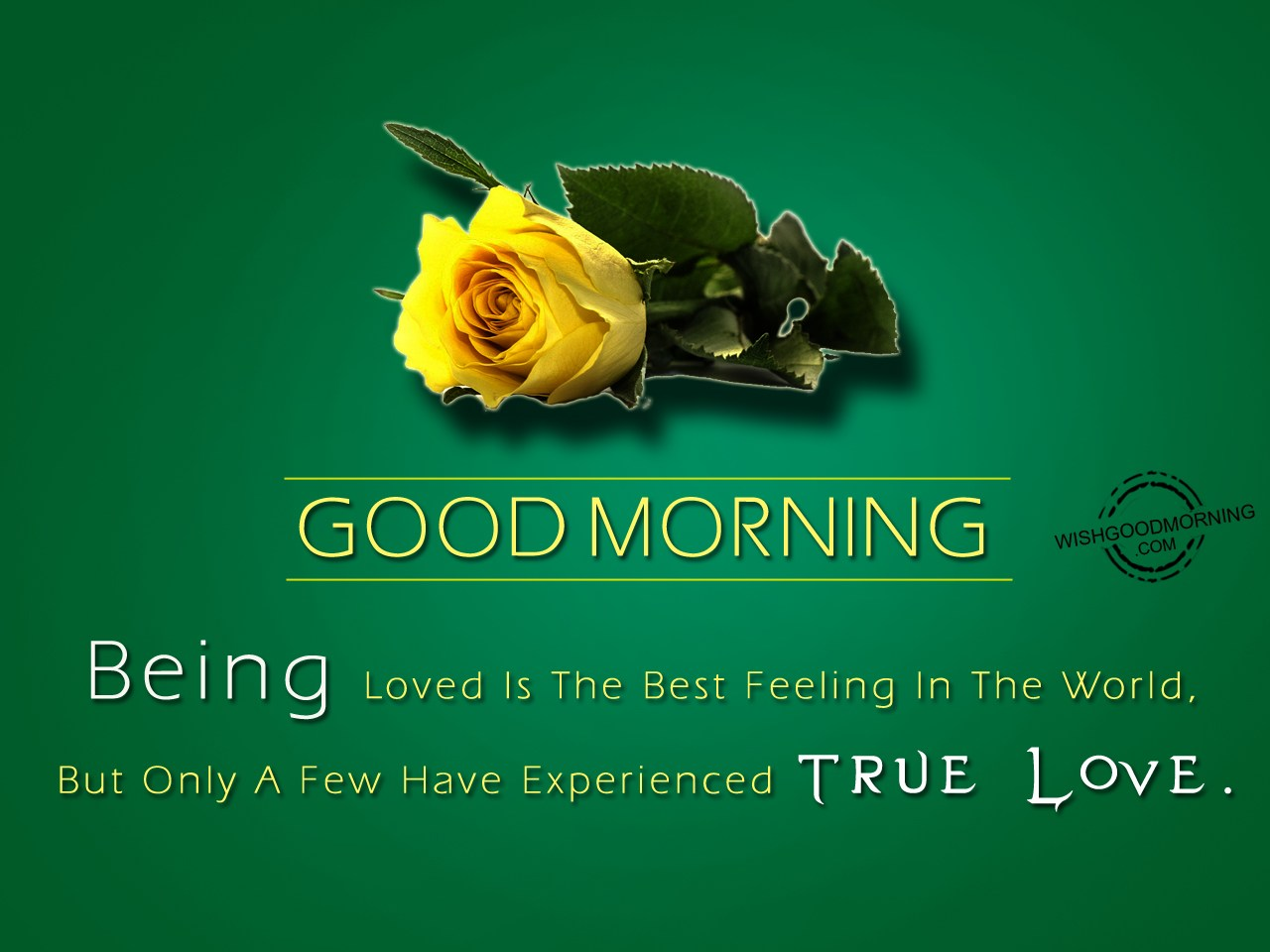 Good Morning Quotes Wife : Good morning wishes messages with beautiful images for