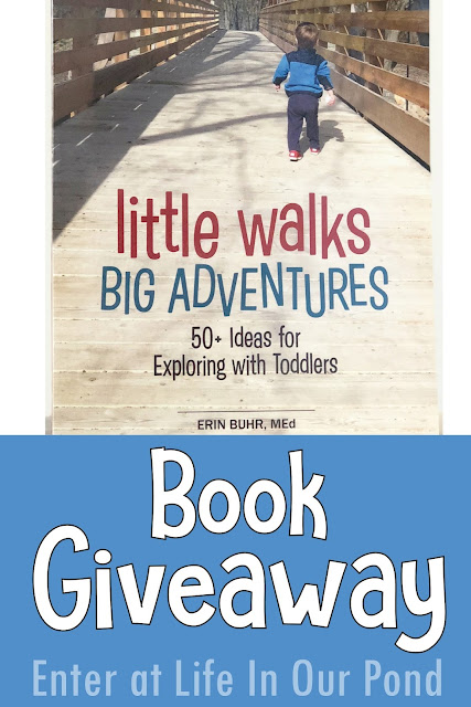 Giveaway!  Ends March 26, 2018   Follow In Our Pond blog on Pinterest!