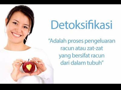 set detox shaklee 0124698356