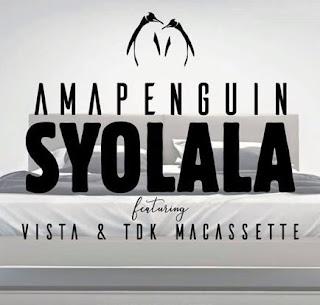 AmaPenguin Feat. Vista x TDK MaCassette – S'yolala
