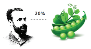 Алдартай эдийн засагч Парето вандуйны ургацын 20% нь 80%-ийн ургац өгнө гэсэн дүгнэлтийг хийсэн.