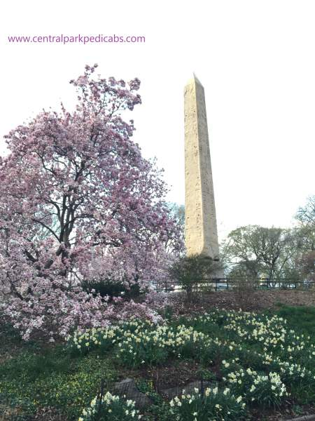 The Obelisk by Central Park Tours