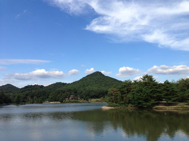 イメージ画像:公園の風景