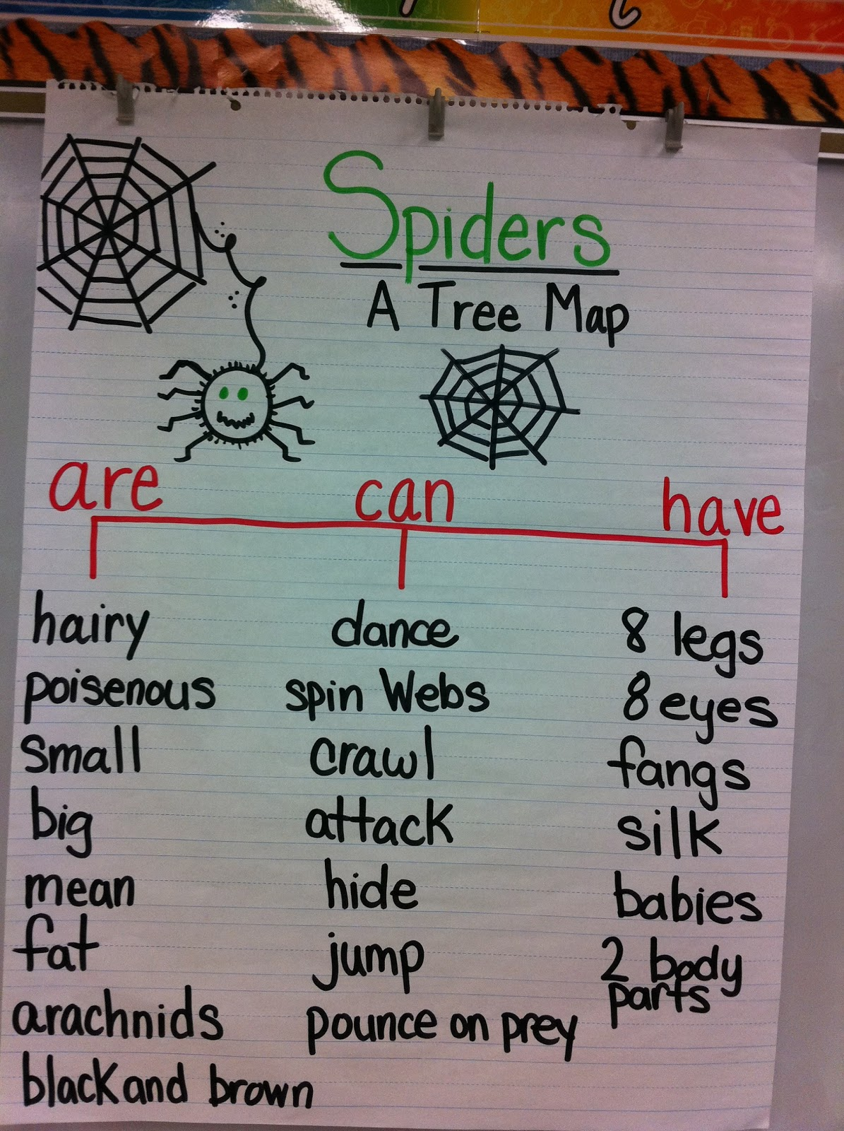 Mrs Andrews Teaching Passion Eeek Spiders