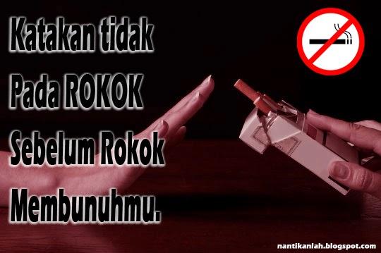bahaya meroko bagi kesehatan