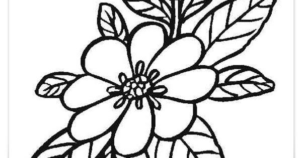 malvorlagen blumen blüten