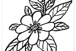 Blumen ausmalbilder 6 Ausmalbilder gratis
