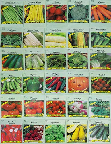 20 Favorite Vegetables Seeds Pack Eggplant Radish and More Celery Cauliflower Carrot Tomatoes Indoor or Outdoor Garden Peppers Grown in USA Pumpkin Heirloom and Non GMO Zucchini