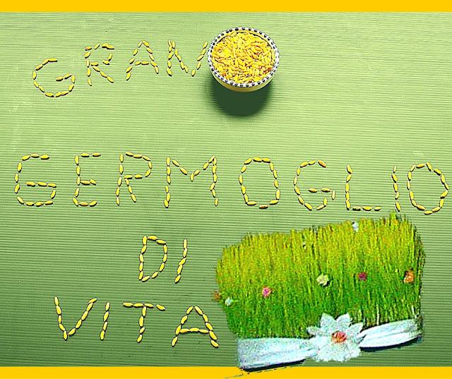 grano della Basilicata, foodfilebasilicata