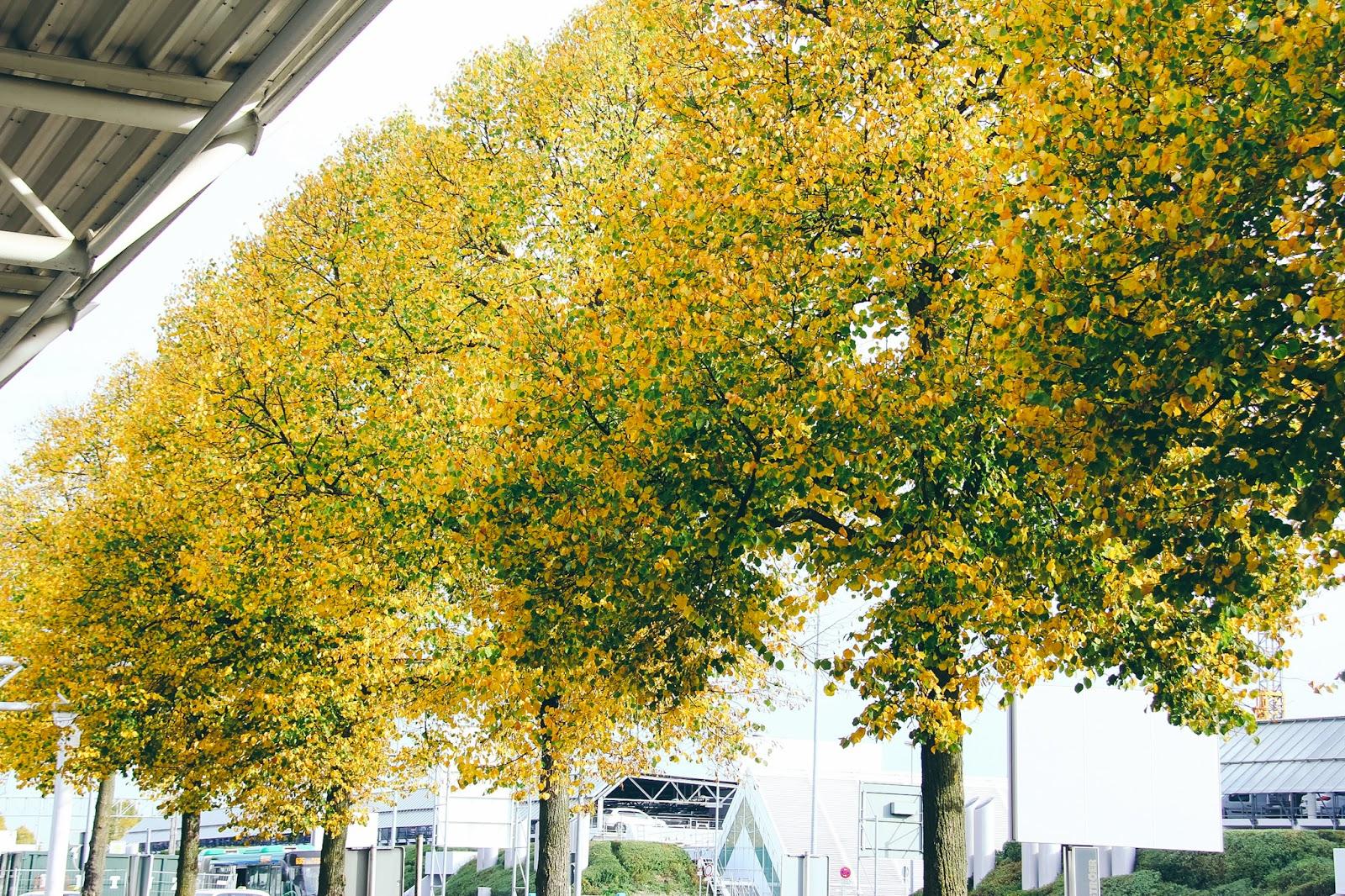 Dari Kuala Lumpur Hingga Ke Munich - Autumn 2