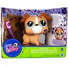 Littlest Pet Shop Deco Pets Boxer (#No #) Pet