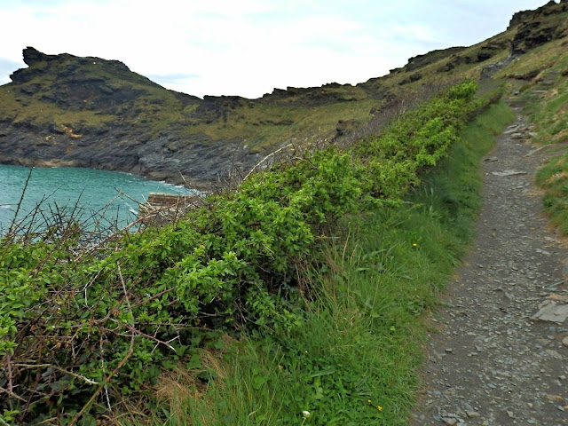 Footpath up side of valley at Boscastle, Cornwall