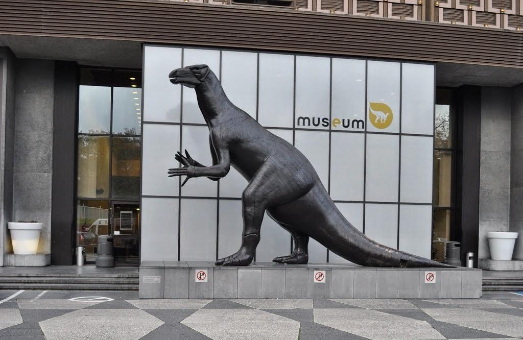 Museu-de-Ciências-Naturais-Bruxelas-Belgica