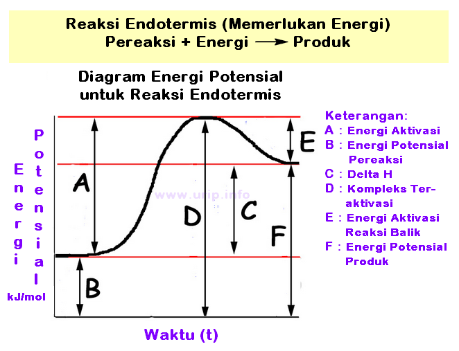 Pembahasan soal tentang profil diagram energi urip dot info secara kinetika reaksi a akan berjalan relatif lebih lambat dibanding b meskipun keduanya bereaksi secara eksotermis tingginya energi aktivasi b lebih ccuart Gallery