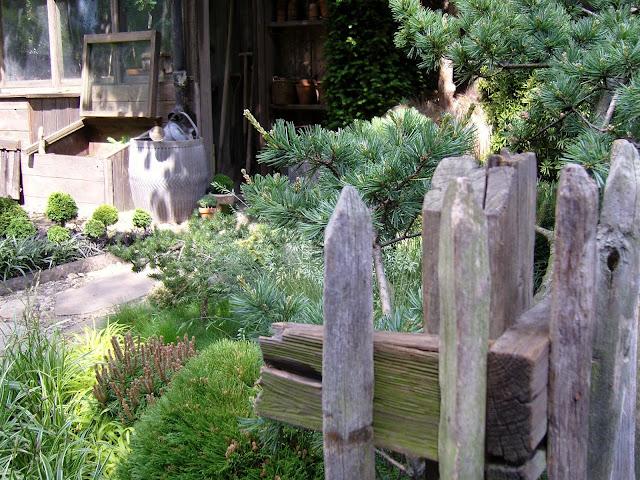 ogród rustykalny, leśny, drewniana mała architektura ogrodowa