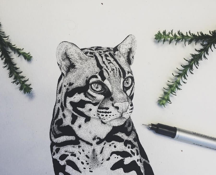 02-Ocelot-Paige-Bates-Stippling-Drawings-www-designstack-co