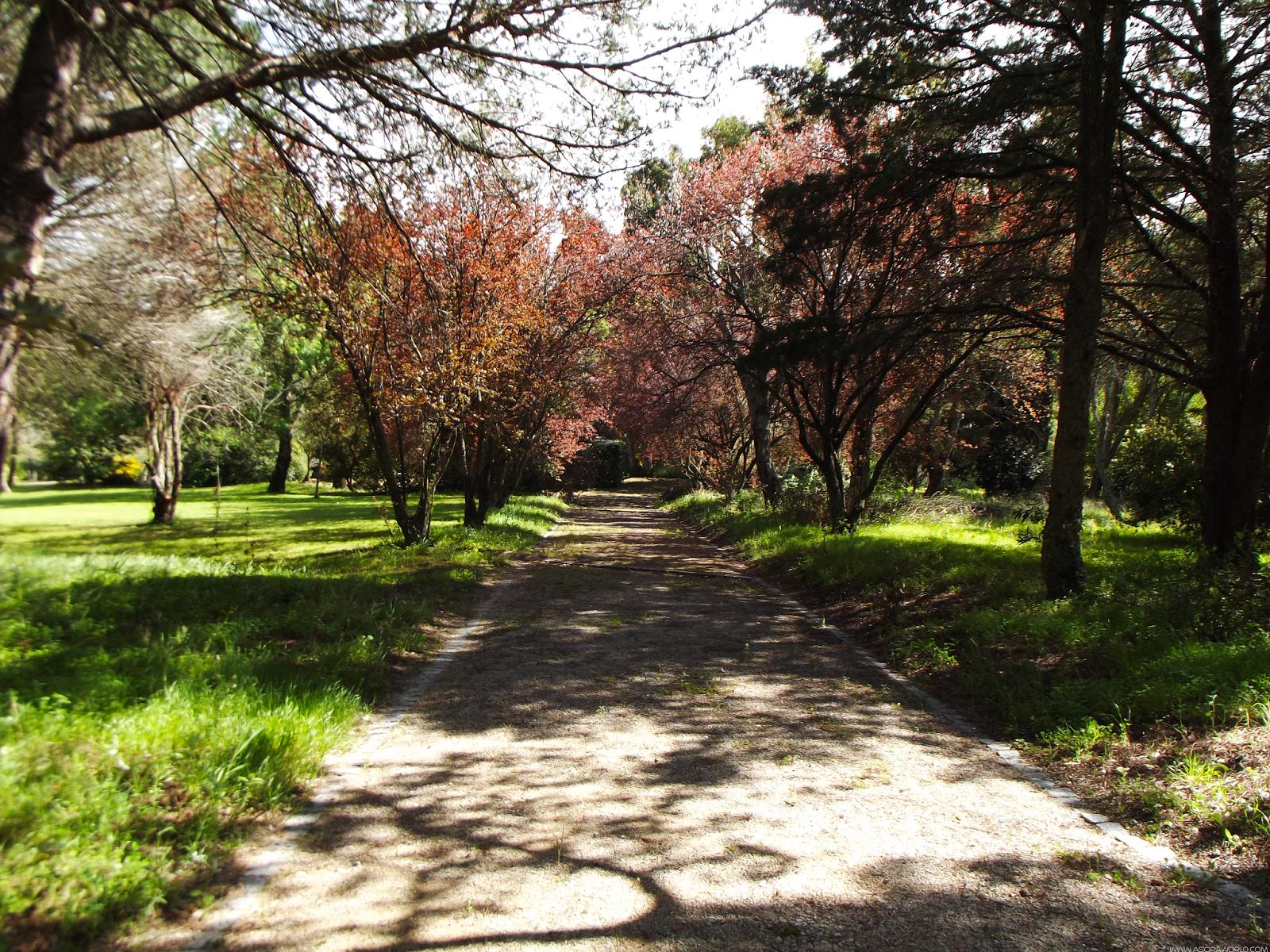 Parque Botânico do Monteiro-Mor, Lumiar, Lisboa
