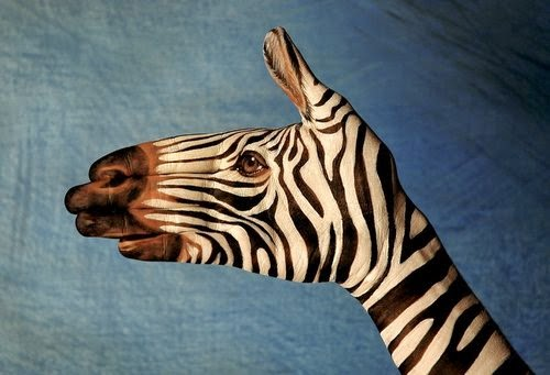 22-Zebra-On-Blue-Guido-Daniele-Painting-Animals-on-Hands-www-designstack-co